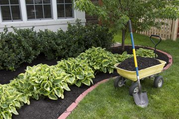 Mulch Installation & Delivery