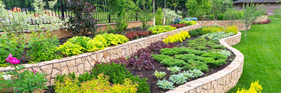 We Have Been Providing 